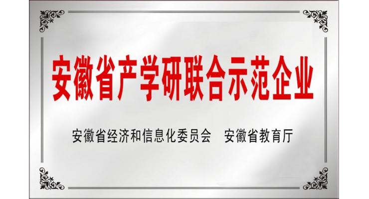 安徽省产学研联合示范企业